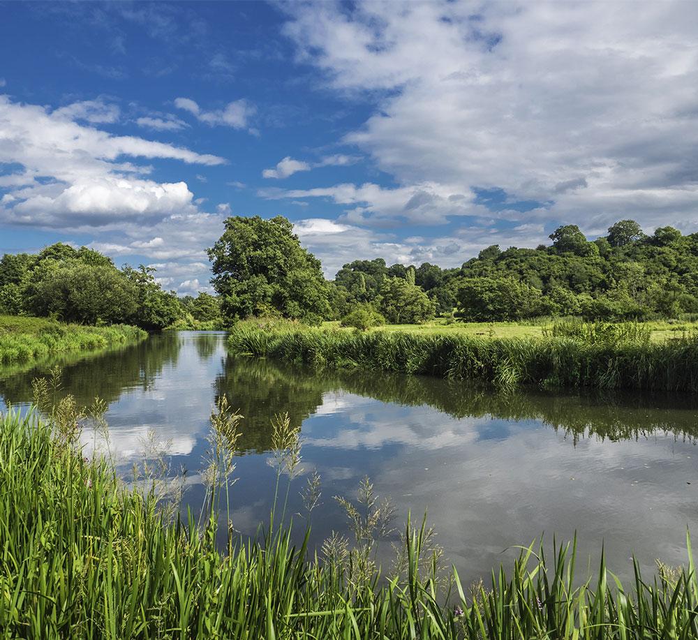River Wey Surrey